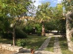 the gardens and the olive grove are wonderful and safe places for the kids to play!