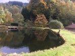 Mill lake natural wild swimming pool