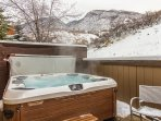 New 6 person Bullfrog hot tub on private patio with wonderful views, privacy and open space