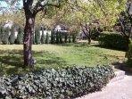 Romatic garden