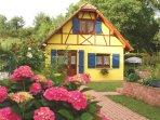 Notre Gite en Alsace en Juin