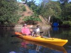 Guest kayaking in front of the property with our dog Chelsy