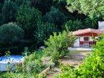 chalet tra alberi di ulivo e da frutto con piscina