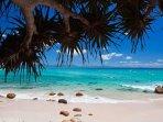 Many beaches nearby, Wategos, Main, The Pass, Broken Head, Lennox Head, Tallow, Belongil
