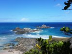 Broken Head headland just 5 min drive for stunning coastal views, spot dolphins and whales and swim
