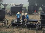 Amish community is strong in Delaware. Dover is the Hub of their community and is just 30 miles