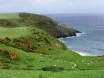 Local cliffs