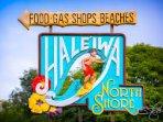 Haleiwa Town 10min drive