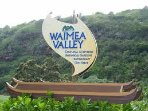 Waimea Valley falls 25min drive