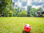Play ball on the green field or lay on the grass.