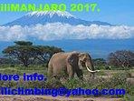 Mt Kilimanjaro.
