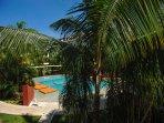 Pool,Water,Hotel,Resort,Swimming Pool