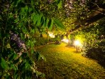 Magical setting of the garden at night time