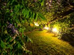View of the garden at night. What a magical setting to come back to!