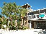 Building, Cottage, Palm Tree, Tree, Dog House