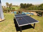 Table tennis table in garden