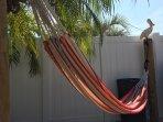 Hammock in fully enclosed patio.