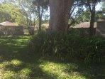 Beautiful backyard with grandfather oak.  Includes a sitting area and is fully fenced.