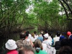 The Caroni Bird sanctuary is just about half hour from Arima.