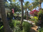 Shared front yard with an abundance of tropical plants and Coconut Palms