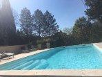 La piscine (8mX4m)