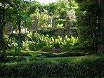 Very romantic garden