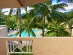 Vue de la terrasse : la piscine et le jardin