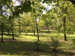 Lots of parks at walking distance