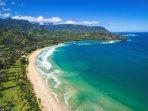 Hanalei Bay all day!  Just steps to the beach!