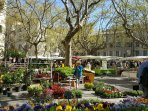 The colourful Uzes Market in the spring time