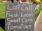 Farm fresh veggies and clean air.