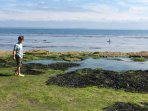 Checking the rock pools on the beach near to the house
