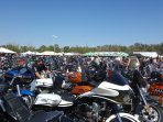 Daytona Bike Week :-)