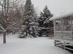Delta in the winter