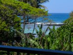Maunaloa Shores 306 is a 2 bedroom, oceanfront condo in Hilo's beach park district.