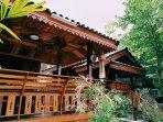 Luxury wood house