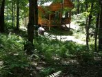 GREAT CABIN NEAR FISHING & OUTDOOR RECREATION