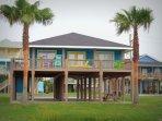 Building,Palm Tree,Tree,Deck,Porch