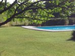 The Field Pool, two pools to choose from and no children!