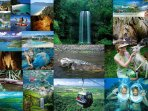 There is a lot to do in and around Cairns - See the Great Barrier Reef - visit Kuranda and lots more