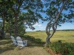 Breathtaking Cape Cod vista from the back yard