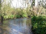 The East Looe River running through the farm.