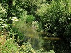The Midford Brook stream runs at the bottom of the garden and there are also fishing opportunities.
