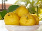 Lemons from the tree in the garden