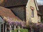 Richmond Cottage, resplendent in wisteria!