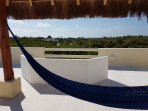 Hammock under the palapa on the rooftop terrace to enjoy ocean views and breezes!