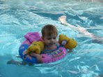 Pool ideal for all ages