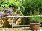 Lavender and bench in courtyard. Scented herb and flower borders throughout.