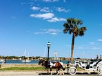 Take a romantic carriage ride downtown by the bay.