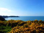 A two minute walk from the door puts you right on the coastal path